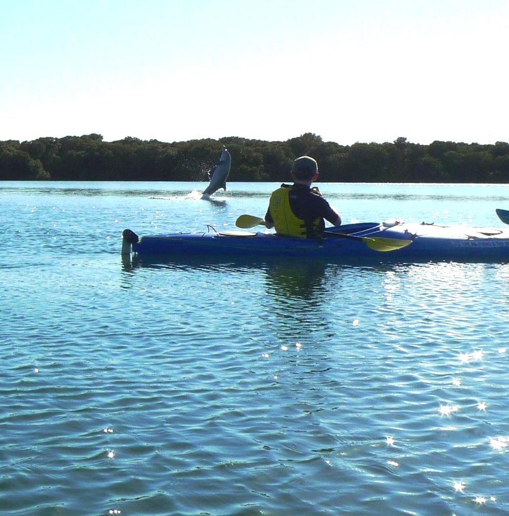 Blog Adventure Kayak Saadventure Kayak Sa